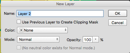 Photoshop confirm new layer