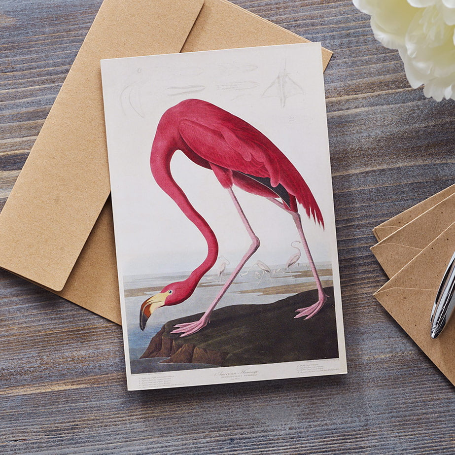 Fine art greetings card with kraft envelope
